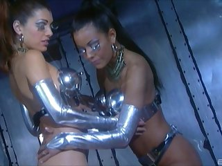 Trimmed pussy models Adriana Sage and Felecia Danay have kinky sex